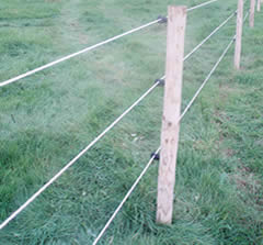 the importance of electric fencing